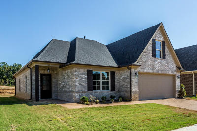 Southaven Single Family Home For Sale: 1173 Hemlock Drive