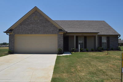 Southaven Single Family Home For Sale: 3975 Log Fence Cove