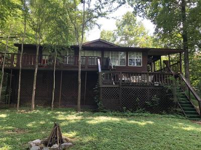 Desoto County Single Family Home For Sale: 2471 1st Lakeview Cove