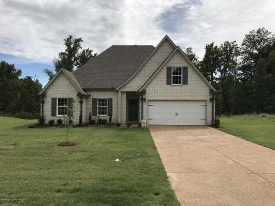 Southaven Single Family Home For Sale: 2247 Christian Lane