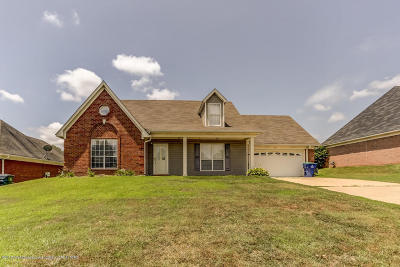 Desoto County Single Family Home For Sale: 3435 Clepsyda Drive
