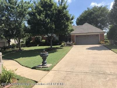 Olive Branch Single Family Home For Sale: 9856 Seminole Drive