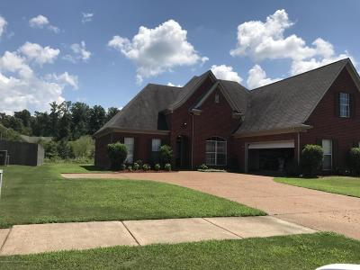 Southaven Single Family Home For Sale: 1299 Trafalgar
