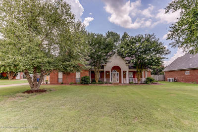 Desoto County Single Family Home For Sale: 6267 Darren Drive