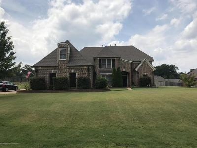 Desoto County Single Family Home For Sale: 4807 Medora Drive
