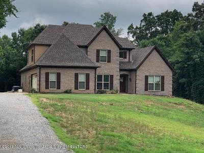 Hernando MS Single Family Home For Sale: $289,000