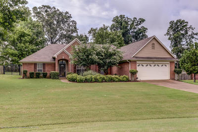 Southaven MS Single Family Home For Sale: $210,000
