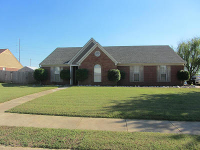 Southaven Single Family Home For Sale: 4255 Man Of War Drive