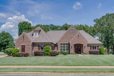 Southaven Single Family Home For Sale: 3978 Corbel Drive