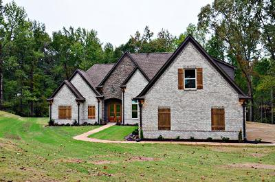 Southaven Single Family Home For Sale: 4345 Trumpington Cove