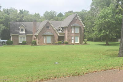 Southaven Single Family Home For Sale: 5745 Plum Tree Drive