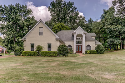 Southaven Single Family Home For Sale: 4420 Windslett Cove