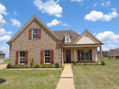 Olive Branch Single Family Home For Sale: 4702 East Dublin