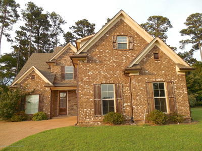 Olive Branch Single Family Home For Sale: 9634 Nielsen Drive