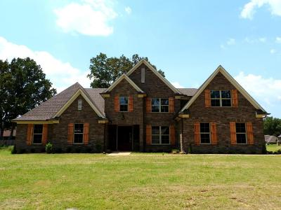 Southaven Single Family Home For Sale: 3945 Tanya Way