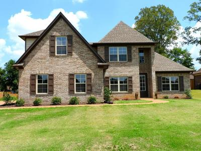 Southaven Single Family Home For Sale: 3706 Tanya Way