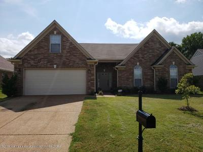 Walls Single Family Home Active/Contingent: 7705 Delta Bluffs Parkway