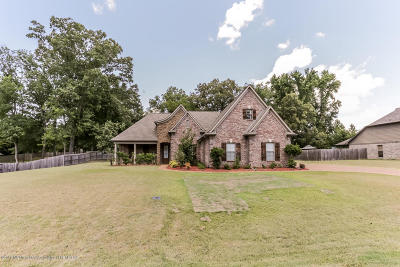 Olive Branch Single Family Home For Sale: 14118 Chapel Ridge Trail