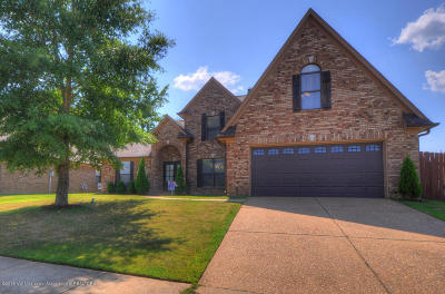 Olive Branch Single Family Home For Sale: 4195 Dockery Drive