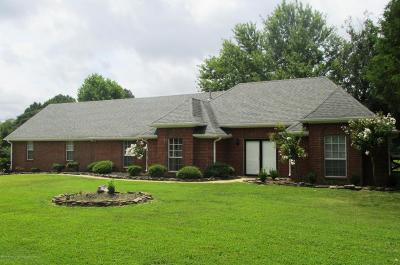 Olive Branch Single Family Home For Sale: 4365 Pleasant Hill Road