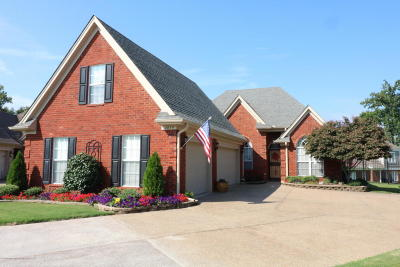 Southaven Single Family Home For Sale: 4059 Chaucer Cove