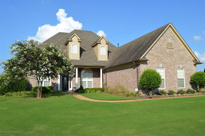 Olive Branch Single Family Home For Sale: 13352 Willow Nest Drive