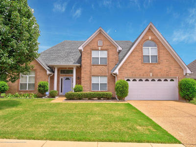 Olive Branch Single Family Home For Sale: 7416 Acree Lane Lane