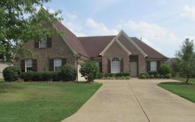 Southaven Single Family Home For Sale: 5876 Landau Drive