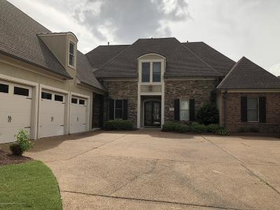 Olive Branch Single Family Home For Sale: 6197 S Bear Cove