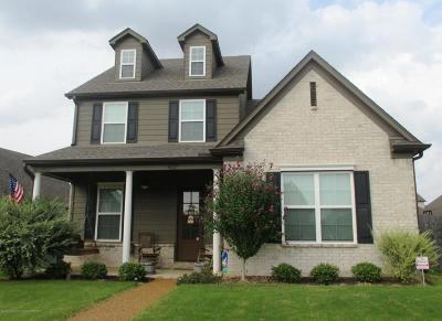 Olive Branch Single Family Home For Sale: 4672 W Dublin