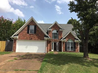 Olive Branch Single Family Home For Sale: 9015 Lakeside Cove