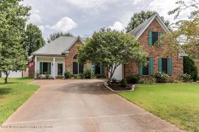 Olive Branch MS Single Family Home For Sale: $196,900