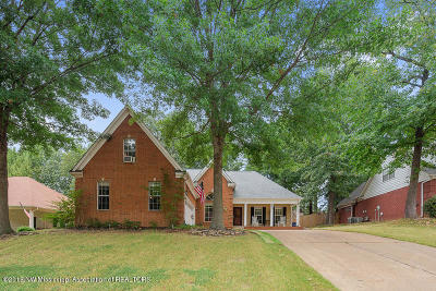 Olive Branch Single Family Home For Sale: 5811 Morganton Drive