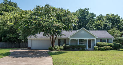 Horn Lake Single Family Home For Sale: 7390 Pintail Drive