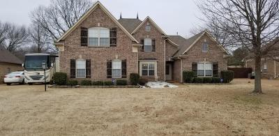 Olive Branch MS Single Family Home For Sale: $309,000