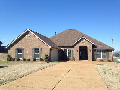 Olive Branch MS Single Family Home For Sale: $250,050