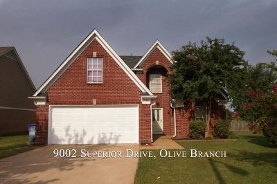 Olive Branch Single Family Home For Sale: 9002 Superior Drive
