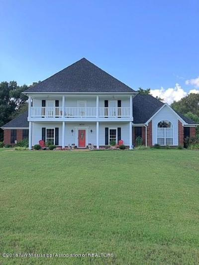 Southaven Single Family Home For Sale: 670 Swinnea Lakes Drive