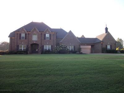 Desoto County Single Family Home For Sale: 2973 Scott