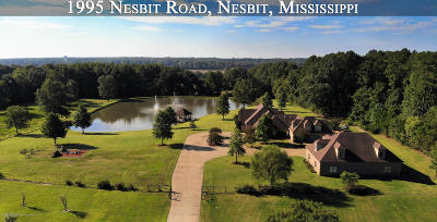 Desoto County Single Family Home For Sale: 1995 Nesbit Road