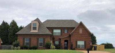 Hernando Single Family Home For Sale: 2228 Della Street
