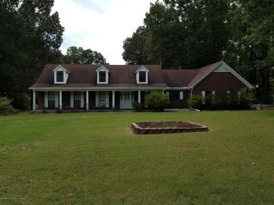 Desoto County Single Family Home For Sale: 3221 Amy Drive
