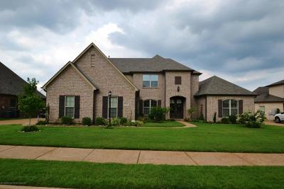 Desoto County Single Family Home For Sale: 6250 N Bear Cove