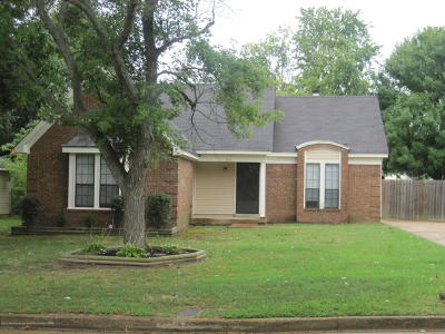 Southaven Single Family Home For Sale: 7411 White Ash Drive