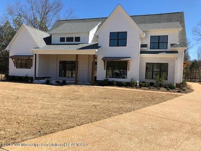 Desoto County Single Family Home For Sale: 5036 Harlech Castle