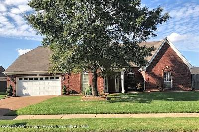 Southaven Single Family Home For Sale: 2736 Greencliff Drive