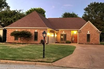 Southaven Single Family Home For Sale: 7182 E Golden Oaks Loop