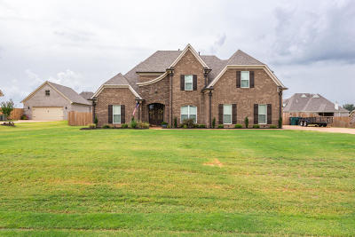 Southaven Single Family Home For Sale: 3807 Daffodil Drive