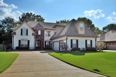 Desoto County Single Family Home For Sale: 4839 Bowie Lane