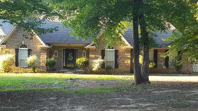 Desoto County Single Family Home For Sale: 9648 Austin Drive